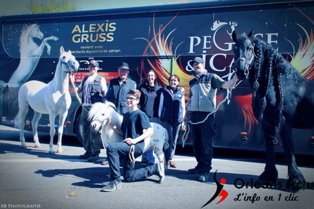 La famille Gruss et ses emblématiques chevaux